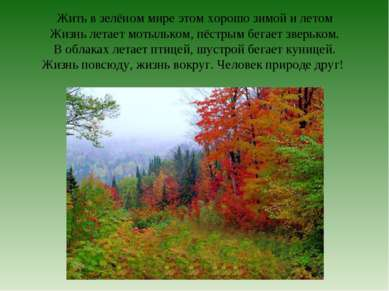 Жить в зелёном мире этом хорошо зимой и летом Жизнь летает мотыльком, пёстрым...