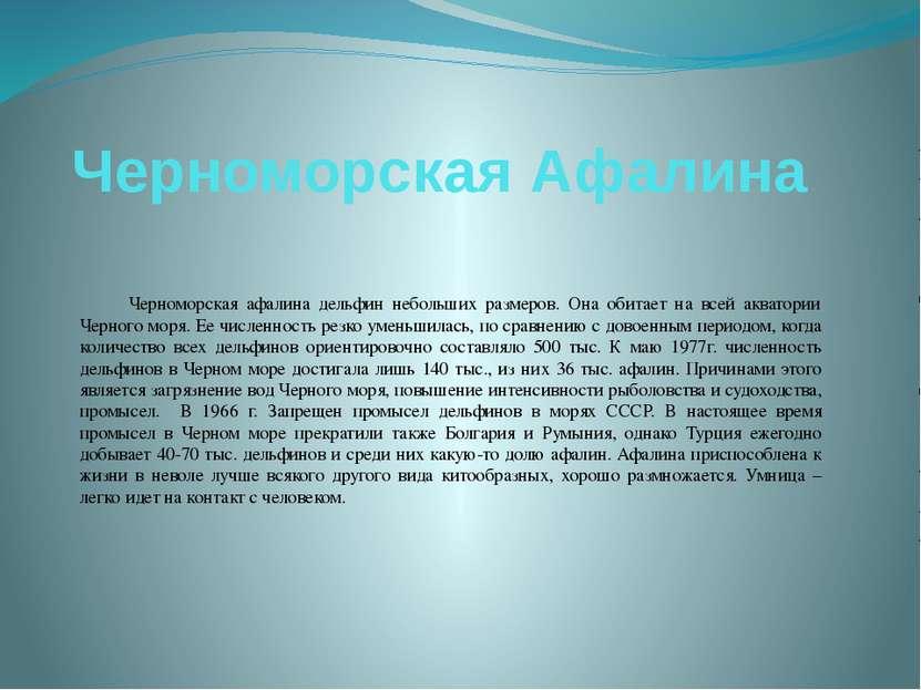 Черноморская Афалина Черноморская афалина дельфин небольших размеров. Она оби...