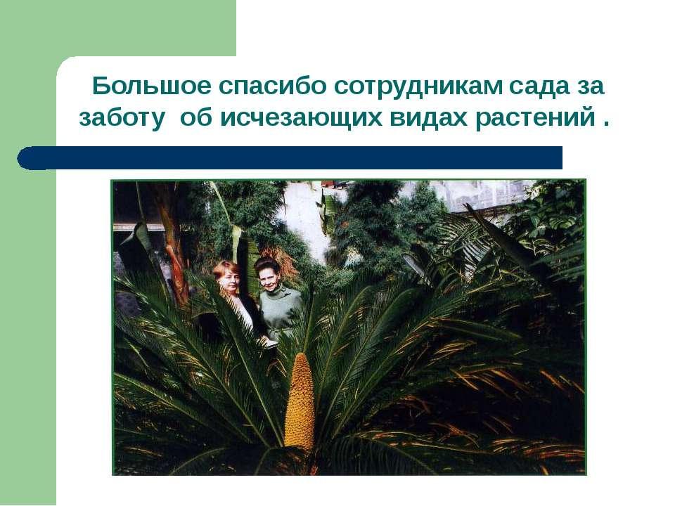Большое спасибо сотрудникам сада за заботу об исчезающих видах растений .