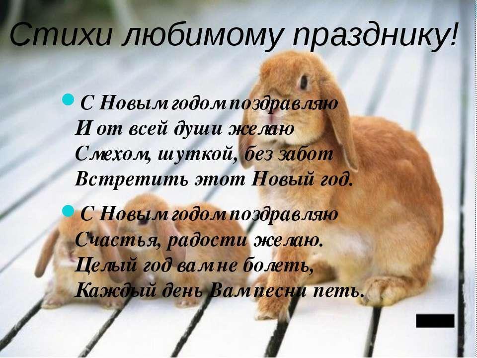 Стихи любимому празднику! С Новым годом поздравляю И от всей души желаю Смехо...