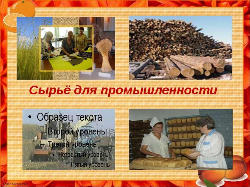 Сырьё для промышленности