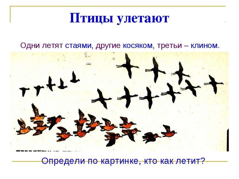 Птицы улетают Одни летят стаями, другие косяком, третьи – клином. Определи по...