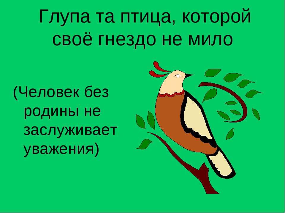 Глупа та птица, которой своё гнездо не мило (Человек без родины не заслуживае...