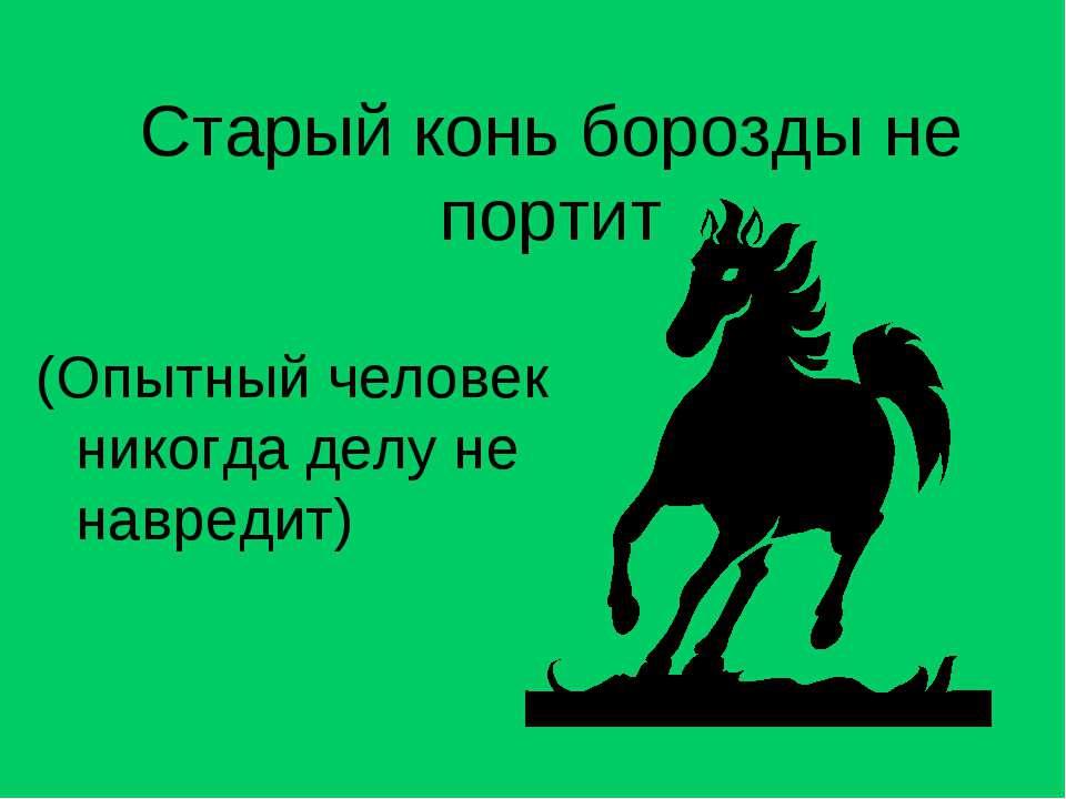 Старый конь борозды не портит (Опытный человек никогда делу не навредит)