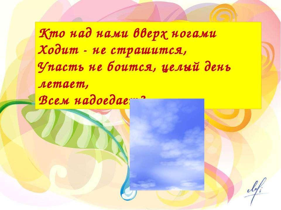 Кто над нами вверх ногами Ходит - не страшится, Упасть не боится, целый день ...