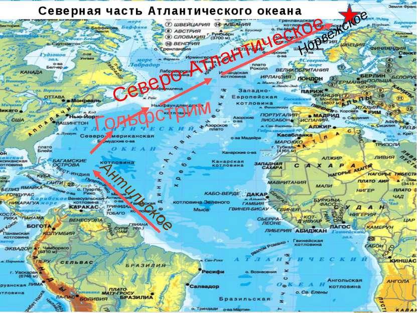 Северная часть Атлантического океана Антильское Гольфстрим Северо-Атлантическ...