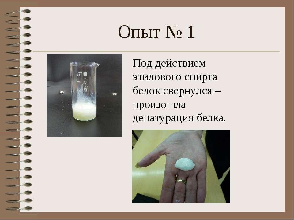 Опыт № 1 Под действием этилового спирта белок свернулся – произошла денатурац...