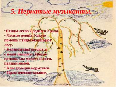 5. Пернатые музыканты. Птицы лесов Среднего Урала. Лесные певцы. Какую помощь...
