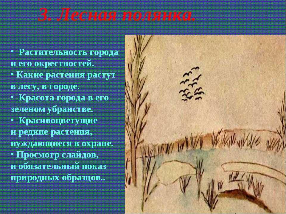 3. Лесная полянка. Растительность города иего окрестностей. Какие растения р...