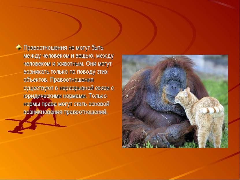 Правоотношения не могут быть между человеком и вещью, между человеком и живот...