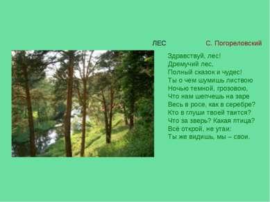 Здравствуй, лес! Дремучий лес, Полный сказок и чудес! Ты о чем шумишь листвою...