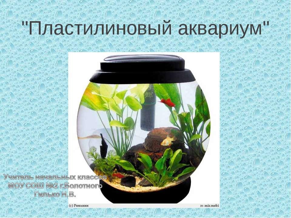 """""""Пластилиновый аквариум"""""""