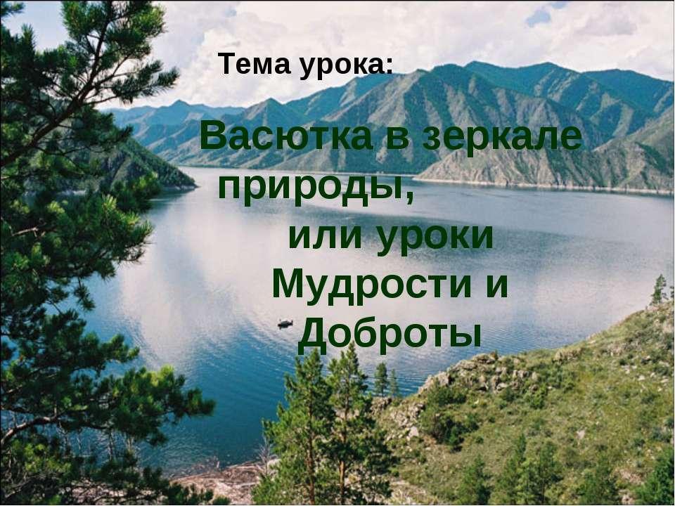 Васютка в зеркале природы, или уроки Мудрости и Доброты Тема урока: