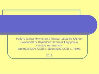 Работу выполнил ученик 9 класса Тукмачев Кирилл Руководитель Шулепова Наталья...