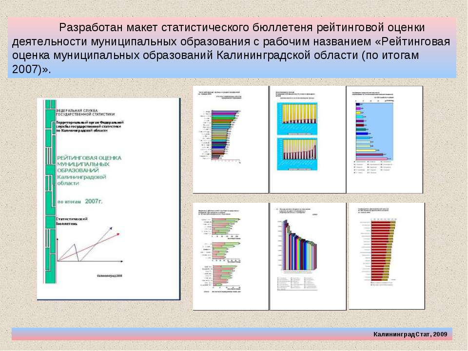 Разработан макет статистического бюллетеня рейтинговой оценки деятельности му...