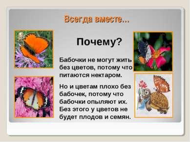 Всегда вместе… Бабочки не могут жить без цветов, потому что питаются нектаром...