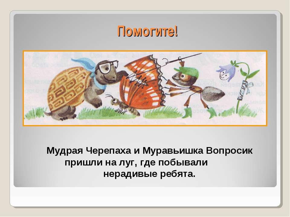 Помогите! Мудрая Черепаха и Муравьишка Вопросик пришли на луг, где побывали н...