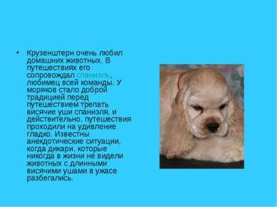 Крузенштерн очень любил домашних животных. В путешествиях его сопровождал спа...