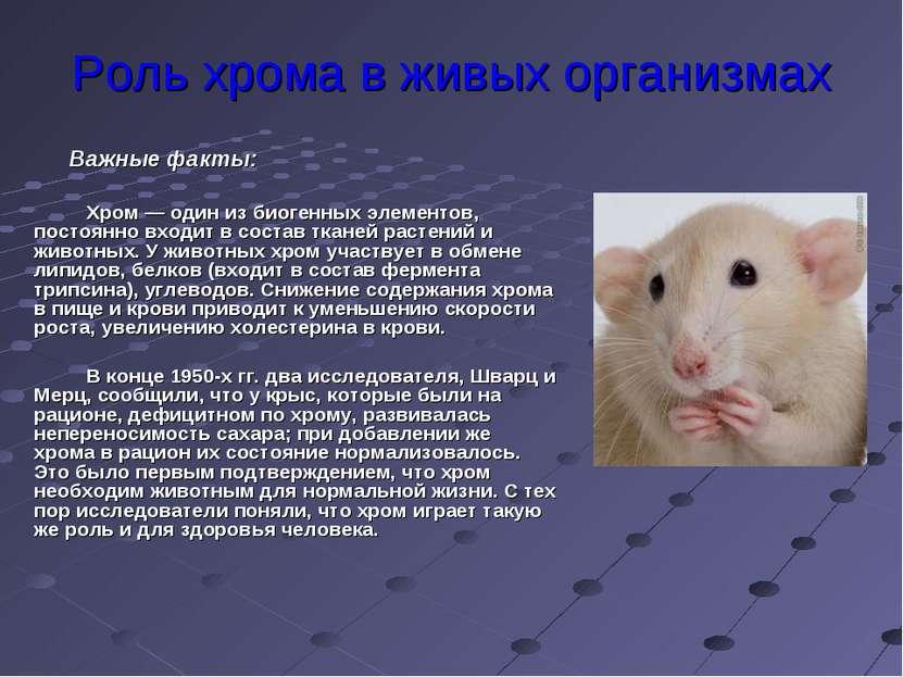Роль хрома в живых организмах Хром — один из биогенных элементов, постоянно в...