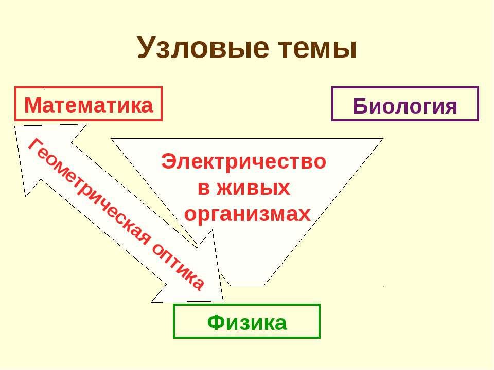 Электричество в живых организмах Геометрическая оптика Узловые темы Математик...