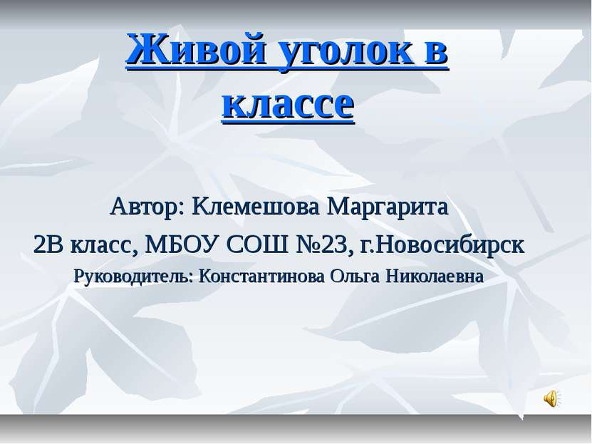 Живой уголок в классе Автор: Клемешова Маргарита 2В класс, МБОУ СОШ №23, г.Но...