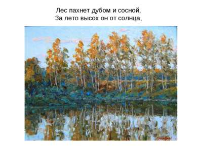 Лес пахнет дубом и сосной, За лето высох он от солнца,