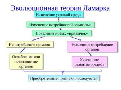 Эволюционная теория Ламарка Изменение условий среды Изменение потребностей ор...