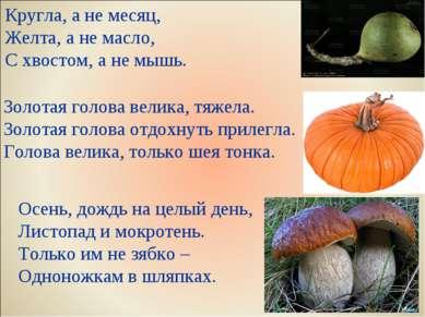 Кругла, а не месяц, Желта, а не масло, С хвостом, а не мышь. Золотая голова в...