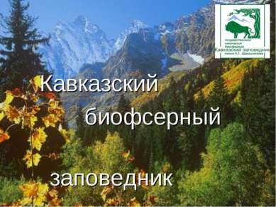 Кавказский биофсерный заповедник