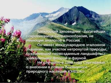 Кавказский заповедник - богатейшая сокровищница биоразнообразия, не имеющая а...