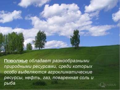 Поволжье обладает разнообразными природными ресурсами, среди которых особо вы...