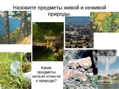 Назовите предметы живой и неживой природы. Какие предметы нельзя отнести к пр...