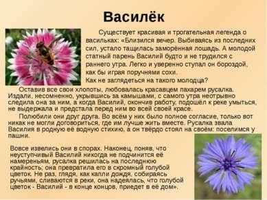 Василёк Оставив все свои хлопоты, любовалась красавцем пахарем русалка. Издал...