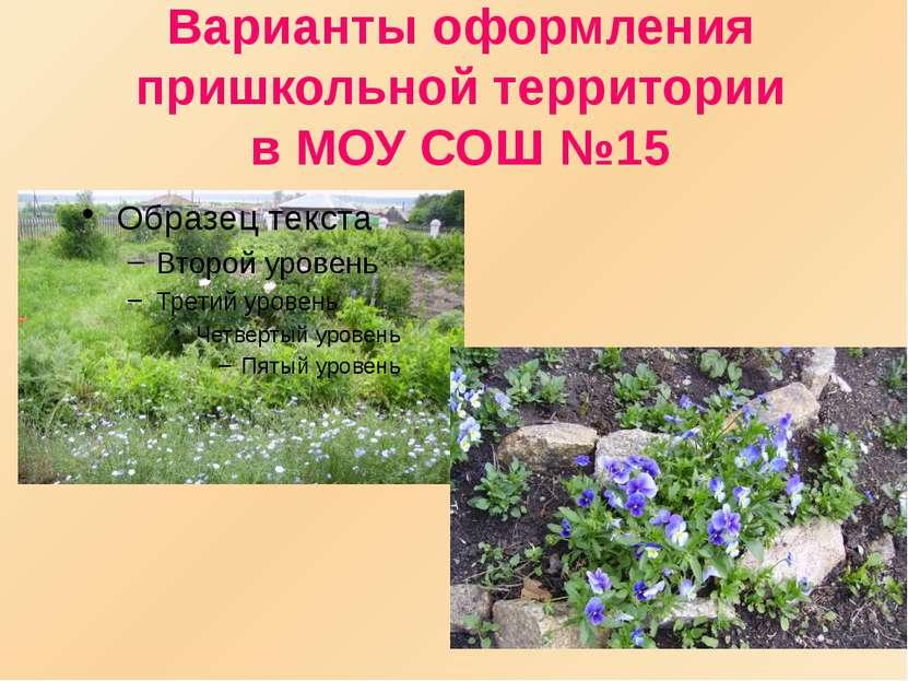Варианты оформления пришкольной территории в МОУ СОШ №15