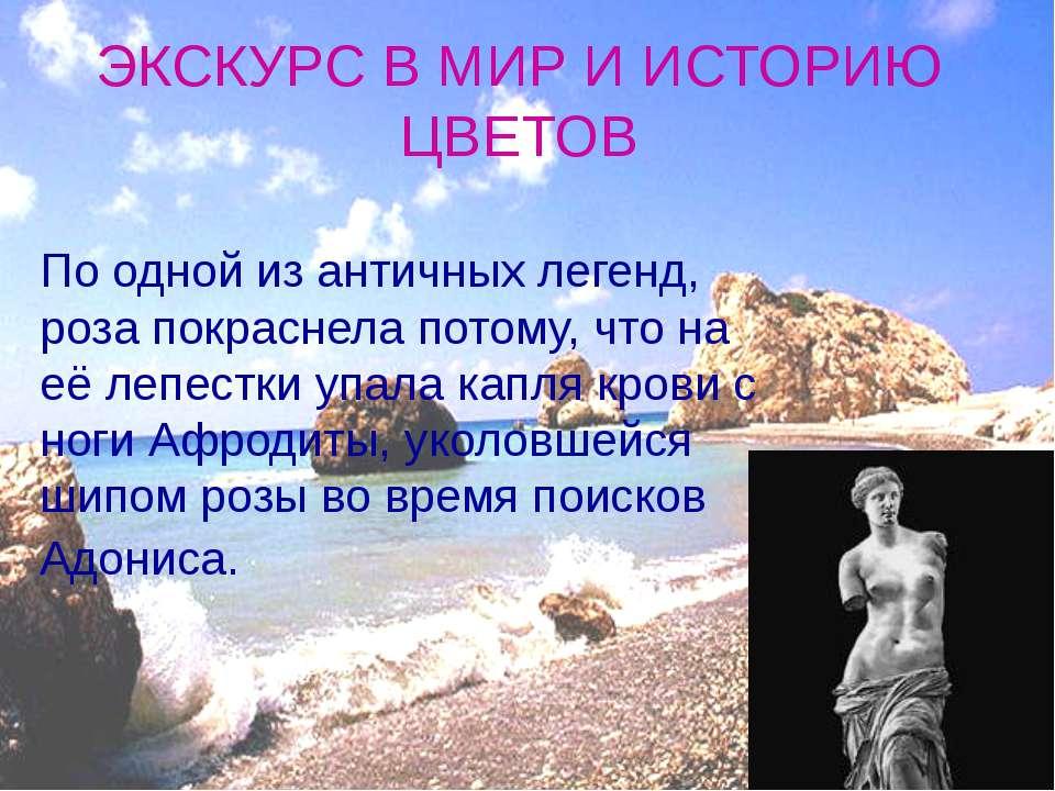 ЭКСКУРС В МИР И ИСТОРИЮ ЦВЕТОВ По одной из античных легенд, роза покраснела п...