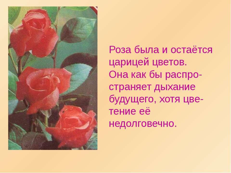 Роза была и остаётся царицей цветов. Она как бы распро-страняет дыхание будущ...