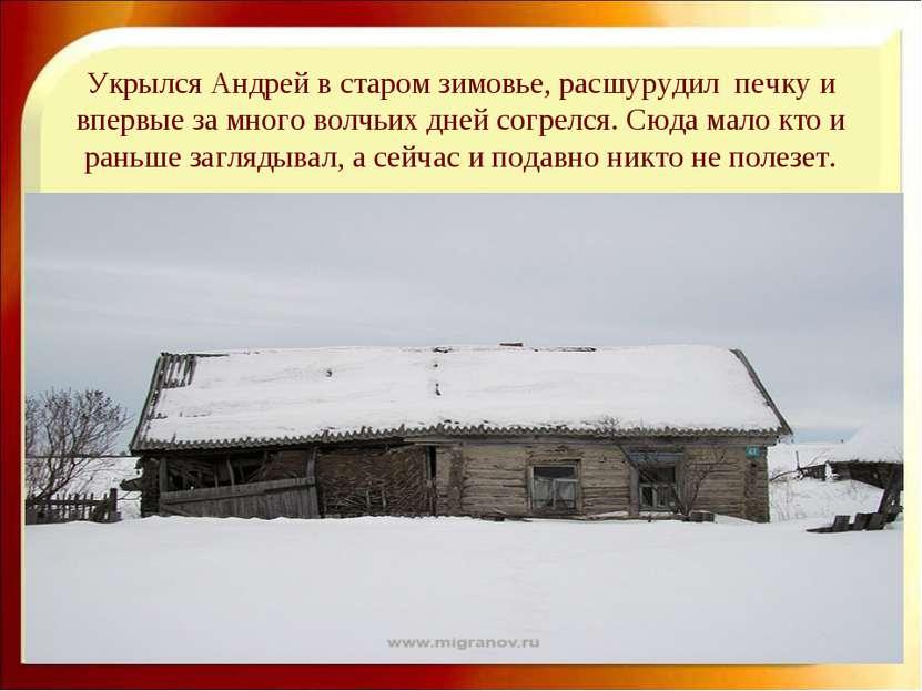 Укрылся Андрей в старом зимовье, расшурудил печку и впервые за много волчьих ...