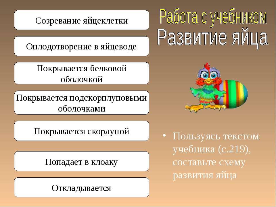 Пользуясь текстом учебника (с.219), составьте схему развития яйца Созревание ...