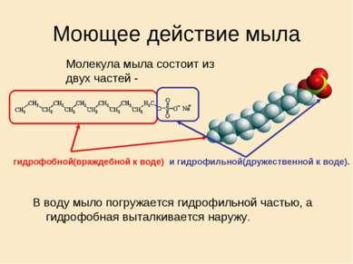 Моющее действие мыла В воду мыло погружается гидрофильной частью, а гидрофобн...