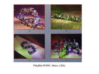 PolyBot (PARK, Xerox, USA)