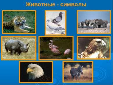 Животные - символы