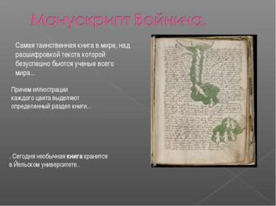 Самая таинственная книга в мире, над расшифровкой текста которой безуспешно б...
