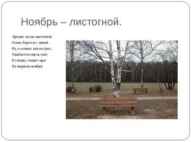 Ноябрь – листогной. Бродит лесом листогной. Осень борется с зимой. Ну, а солн...