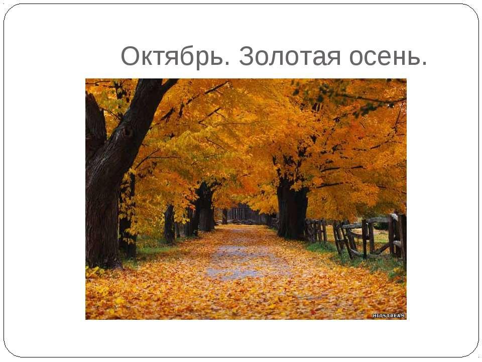 Октябрь. Золотая осень.