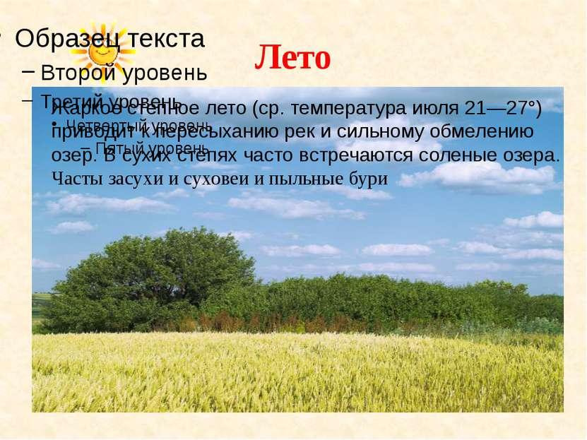 Лето Жаркое степное лето (ср. температура июля 21—27°) приводит к пересыханию...