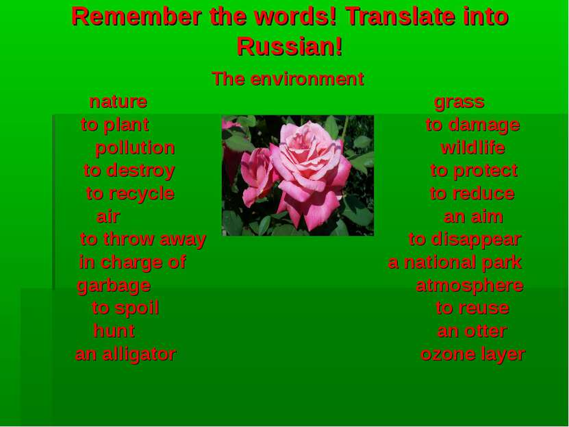 Remember the words! Translate into Russian! The environment nature grass to p...
