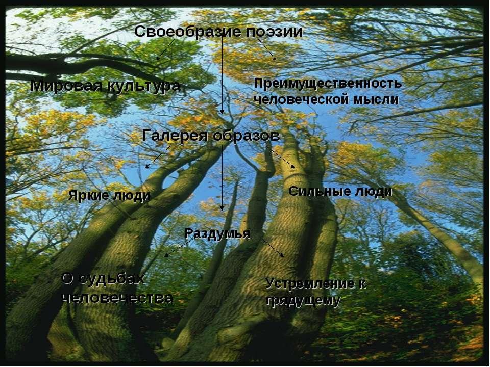 Своеобразие поэзии Мировая культура Преимущественность человеческой мысли Гал...