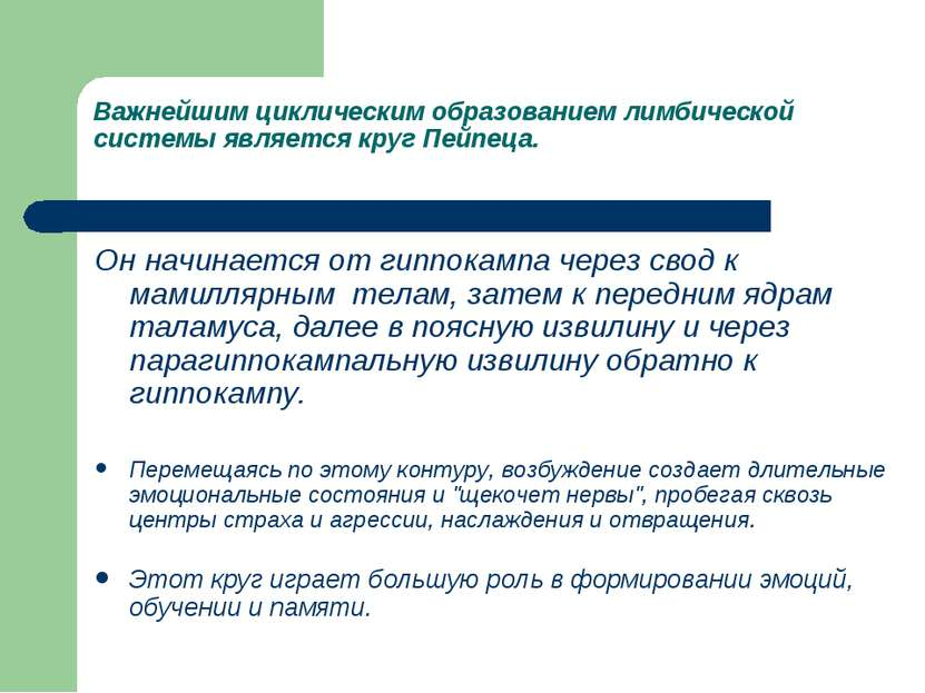 Важнейшим циклическим образованием лимбической системы является круг Пейпеца....