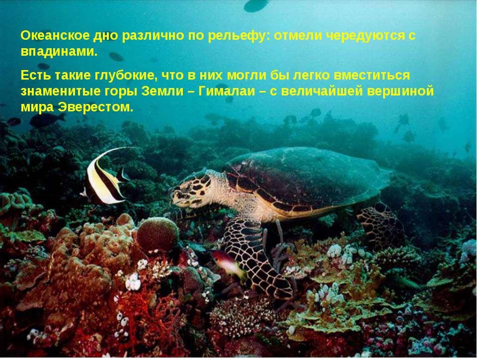 Океанское дно различно по рельефу: отмели чередуются с впадинами. Есть такие ...