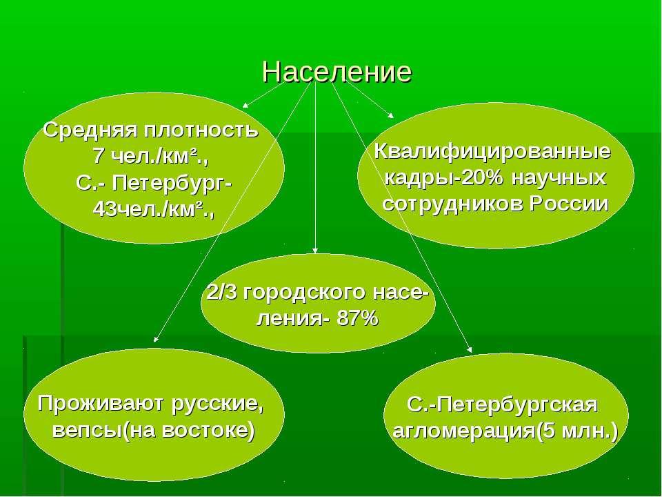Население Средняя плотность 7 чел./км²., С.- Петербург- 43чел./км²., Квалифиц...